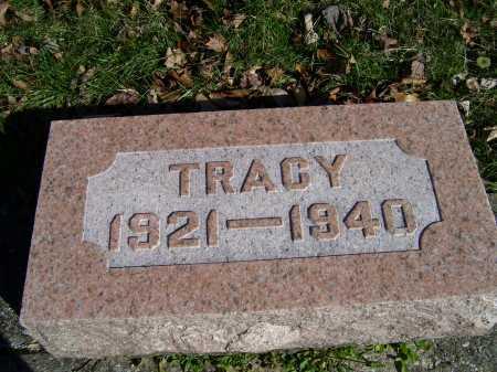 FREEMAN, TRACY - Scioto County, Ohio | TRACY FREEMAN - Ohio Gravestone Photos
