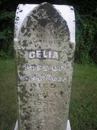 GLAZE, CELIA - Scioto County, Ohio | CELIA GLAZE - Ohio Gravestone Photos