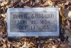 GOODWIN, MILLIE - Scioto County, Ohio | MILLIE GOODWIN - Ohio Gravestone Photos