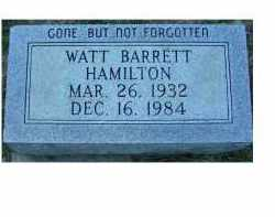 HAMILTON, WATT BARRETT - Scioto County, Ohio | WATT BARRETT HAMILTON - Ohio Gravestone Photos