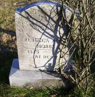 HOBBS, REBECCA ALICE - Scioto County, Ohio | REBECCA ALICE HOBBS - Ohio Gravestone Photos