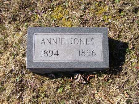 JONES, ANNIE - Scioto County, Ohio | ANNIE JONES - Ohio Gravestone Photos