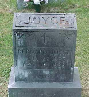 JOYCE, BERNARD - Scioto County, Ohio | BERNARD JOYCE - Ohio Gravestone Photos