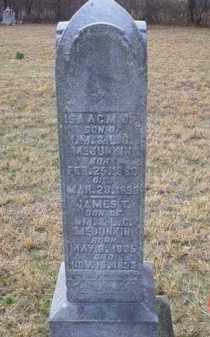 MCJUNKIN, ISAAC M. JR. - Scioto County, Ohio | ISAAC M. JR. MCJUNKIN - Ohio Gravestone Photos