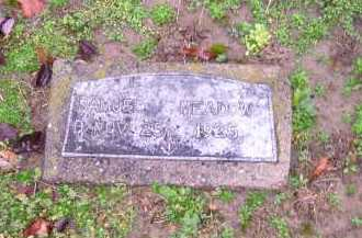 MEADOWS, SAMUEL - Scioto County, Ohio   SAMUEL MEADOWS - Ohio Gravestone Photos
