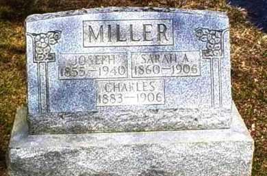 MILLER, SARAH A. - Scioto County, Ohio | SARAH A. MILLER - Ohio Gravestone Photos