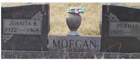 MORGAN, JUANITA B. - Scioto County, Ohio | JUANITA B. MORGAN - Ohio Gravestone Photos