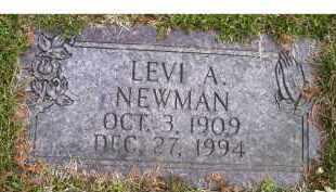 NEWMAN, LEVI A. - Scioto County, Ohio | LEVI A. NEWMAN - Ohio Gravestone Photos