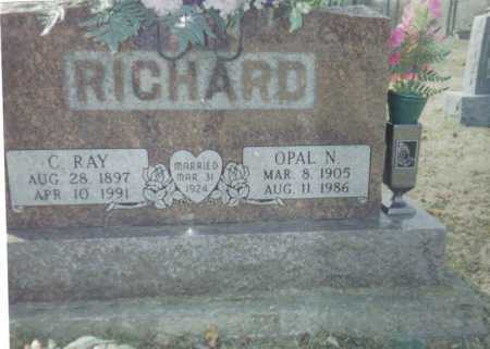 RICHARD, C. RAY - Scioto County, Ohio | C. RAY RICHARD - Ohio Gravestone Photos