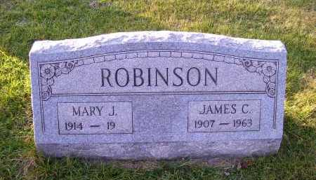 ROBINSON, MARY J. - Scioto County, Ohio | MARY J. ROBINSON - Ohio Gravestone Photos