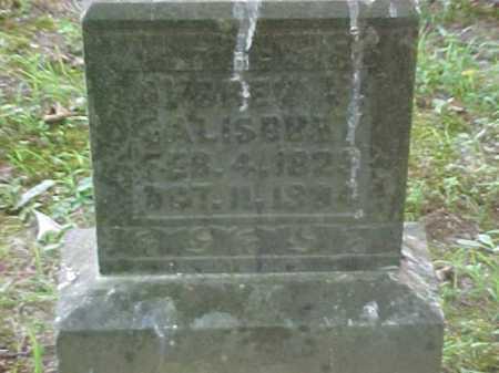 SALISBURY, BRET ? - Scioto County, Ohio | BRET ? SALISBURY - Ohio Gravestone Photos