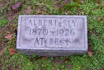 SLY, ALBERT - Scioto County, Ohio | ALBERT SLY - Ohio Gravestone Photos