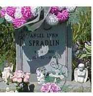 SPRADLIN, ANGEL LYNN - Scioto County, Ohio | ANGEL LYNN SPRADLIN - Ohio Gravestone Photos