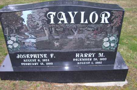 TAYLOR, HARRY M. - Scioto County, Ohio | HARRY M. TAYLOR - Ohio Gravestone Photos
