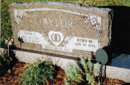 TAYLOR, TONY F. - Scioto County, Ohio | TONY F. TAYLOR - Ohio Gravestone Photos