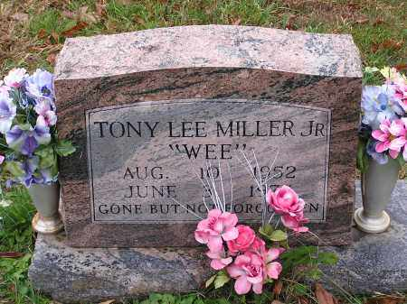TONY, LEE - Scioto County, Ohio | LEE TONY - Ohio Gravestone Photos