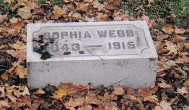 WEBB, SOPHIA - Scioto County, Ohio | SOPHIA WEBB - Ohio Gravestone Photos