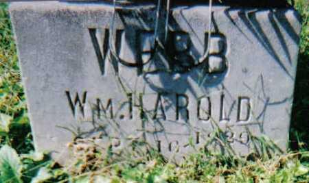 WEBB, WM HAROLD - Scioto County, Ohio | WM HAROLD WEBB - Ohio Gravestone Photos