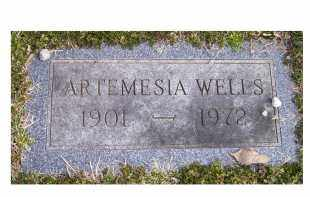 WELLS, ARTEMESIA - Scioto County, Ohio | ARTEMESIA WELLS - Ohio Gravestone Photos