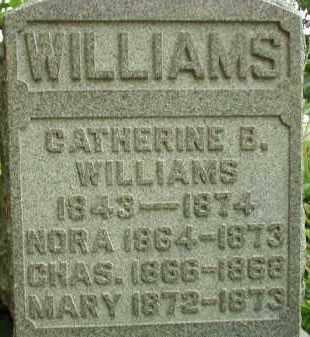 WILLIAMS, NORA - Scioto County, Ohio | NORA WILLIAMS - Ohio Gravestone Photos