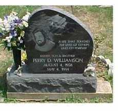 WILLIAMSON, PERRY D. - Scioto County, Ohio | PERRY D. WILLIAMSON - Ohio Gravestone Photos