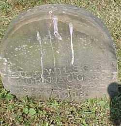 WILSON, D. A. - Scioto County, Ohio | D. A. WILSON - Ohio Gravestone Photos