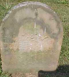 WILSON, D. - Scioto County, Ohio | D. WILSON - Ohio Gravestone Photos