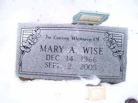 WISE, MARY A. - Scioto County, Ohio | MARY A. WISE - Ohio Gravestone Photos