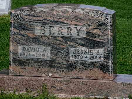 BERRY, DAVID ALONZO - Seneca County, Ohio | DAVID ALONZO BERRY - Ohio Gravestone Photos