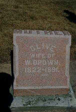 DROWN, OLIVE P - Seneca County, Ohio | OLIVE P DROWN - Ohio Gravestone Photos