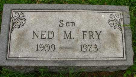 FRY, NED - Seneca County, Ohio | NED FRY - Ohio Gravestone Photos
