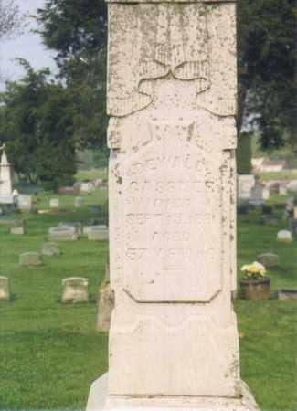 GASSNER, DEWALD - Seneca County, Ohio   DEWALD GASSNER - Ohio Gravestone Photos