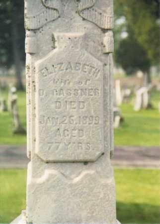 GASSNER, ELIZABETH - Seneca County, Ohio | ELIZABETH GASSNER - Ohio Gravestone Photos