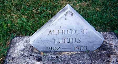 LUCIUS, ALFRED - Seneca County, Ohio | ALFRED LUCIUS - Ohio Gravestone Photos