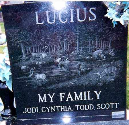 LUCIUS, SCOTT - Seneca County, Ohio | SCOTT LUCIUS - Ohio Gravestone Photos