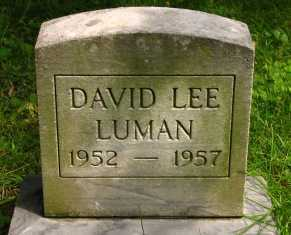 LUMAN, DAVID LEE - Seneca County, Ohio | DAVID LEE LUMAN - Ohio Gravestone Photos