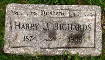 RICHARDS, HARRY - Seneca County, Ohio | HARRY RICHARDS - Ohio Gravestone Photos