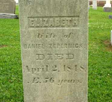 ZEPERNICK, DANIEL - Seneca County, Ohio | DANIEL ZEPERNICK - Ohio Gravestone Photos