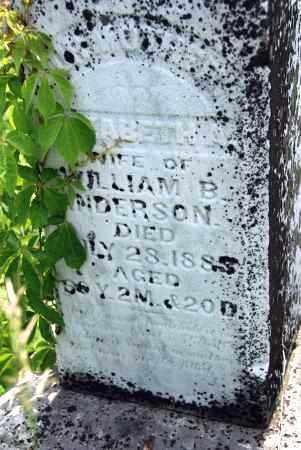 ANDERSON, ELIZABETH - Shelby County, Ohio | ELIZABETH ANDERSON - Ohio Gravestone Photos