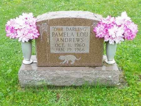 ANDREWS, PAMELA LOU - Shelby County, Ohio | PAMELA LOU ANDREWS - Ohio Gravestone Photos