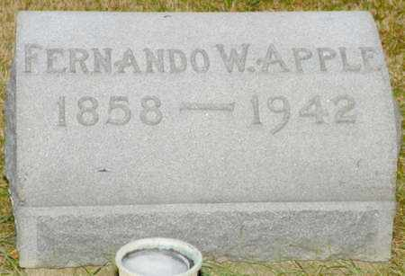 APPLE, FERNANDO W. - Shelby County, Ohio | FERNANDO W. APPLE - Ohio Gravestone Photos