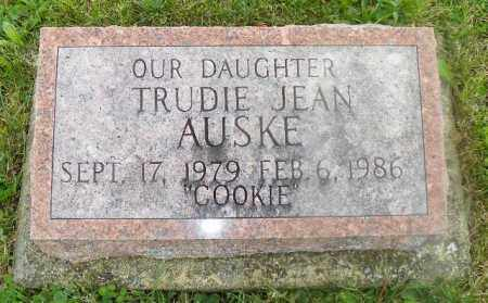 AUSKE, TRUDIE JEAN - Shelby County, Ohio | TRUDIE JEAN AUSKE - Ohio Gravestone Photos