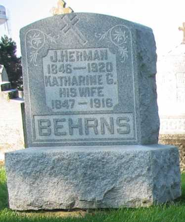 BEHRNS, J. HERMAN - Shelby County, Ohio | J. HERMAN BEHRNS - Ohio Gravestone Photos