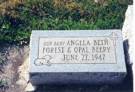 BEERY, ANGELA BETH - Shelby County, Ohio | ANGELA BETH BEERY - Ohio Gravestone Photos