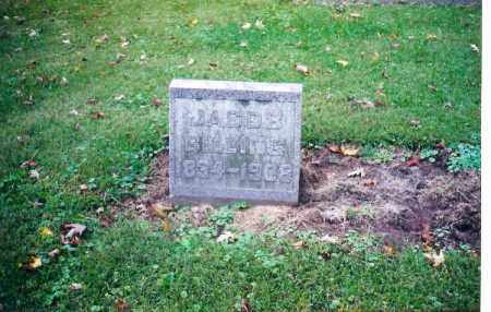 BILLING, JACOB - Shelby County, Ohio | JACOB BILLING - Ohio Gravestone Photos
