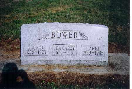 CAREY BOWER, IDA - Shelby County, Ohio | IDA CAREY BOWER - Ohio Gravestone Photos