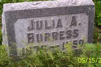 BURRESS, JULIA A. - Shelby County, Ohio | JULIA A. BURRESS - Ohio Gravestone Photos