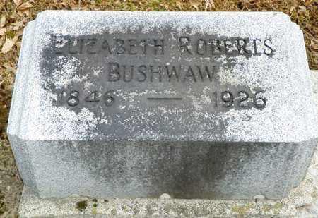 BUSHWAW, ELIZABETH ROBERTS - Shelby County, Ohio | ELIZABETH ROBERTS BUSHWAW - Ohio Gravestone Photos