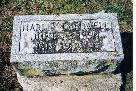 CALDWELL, HARLEY - Shelby County, Ohio | HARLEY CALDWELL - Ohio Gravestone Photos