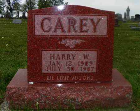 CAREY, HARRY W. - Shelby County, Ohio | HARRY W. CAREY - Ohio Gravestone Photos